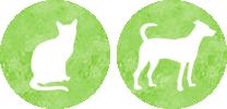 診療対象動物:犬、猫